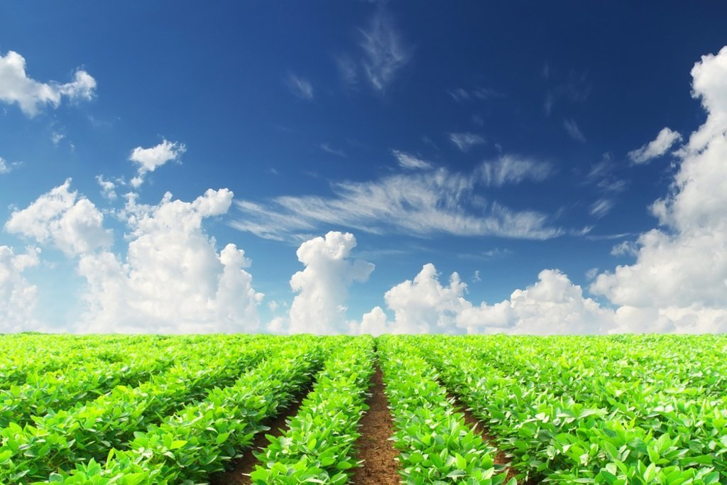 Image for article Food for Thought: Why Investing in Agriculture is the Next Big Thing