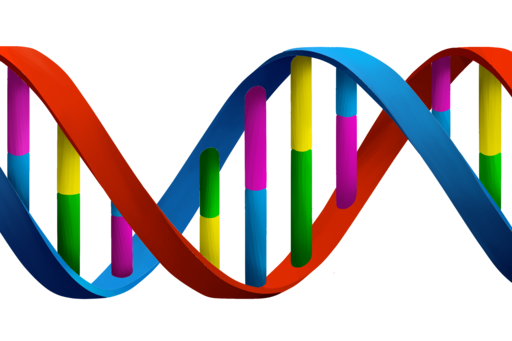 Image for article Personal Genetic Testing Is Here. Do We Need It?